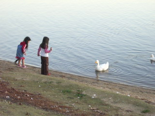 kids with ahiru at lwp.jpg