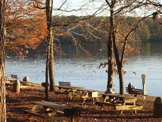 lake side 1 at lwp.jpg